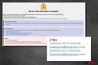 le virus des fichiers .adobe