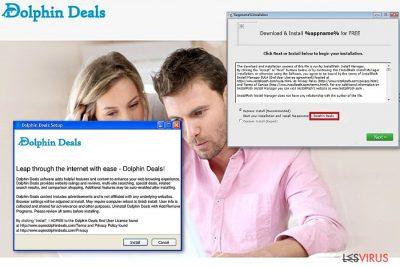 Dolphin Deals Ads