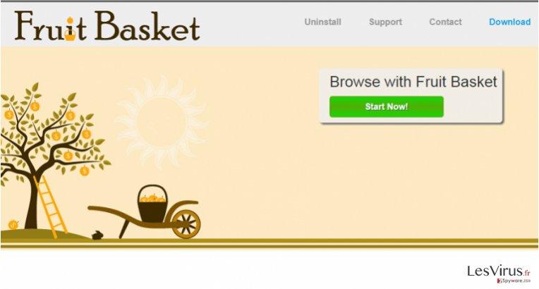 Fruit Basket annonces instantané