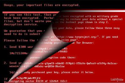 Une image représentant le virus NotPetya