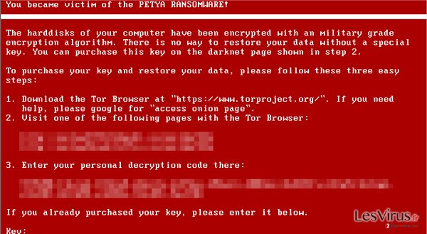 Petya virus example screenshot