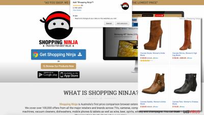 Shopping Ninja ads