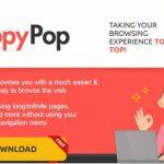 Annonces par ToppyPop instantané