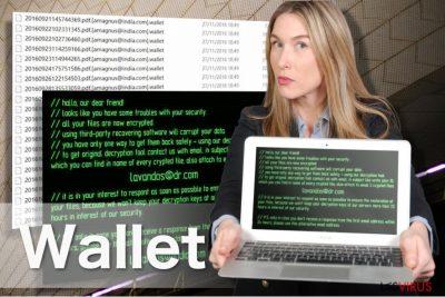 Illustration du virus rançongiciel Wallet
