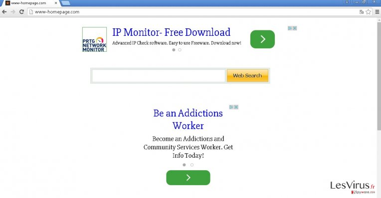 Www-homepage.com hijack instantané