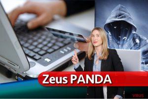 Le virus Zeus Panda